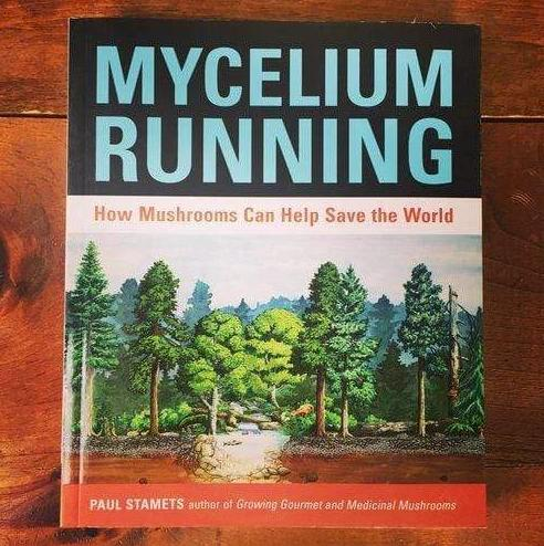 """The cover of the book """"Mycelium Running"""" by Paul Stamets."""