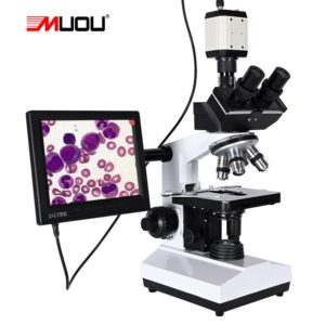 High end microscope with HD screen attachment.