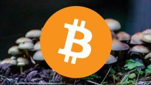 bitcoin for psilocybin mushroom spores