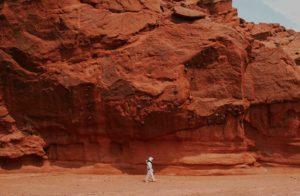 fungi discovered on mars